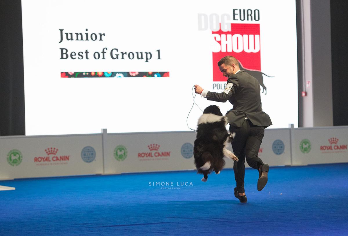 europeandogshowvarsavia2018shootingfotografici